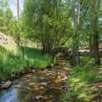 Little Cub Creek