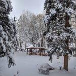 The Pergola in Winter