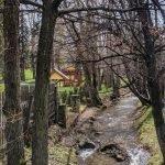 Little Cub Creek - Spring 2019