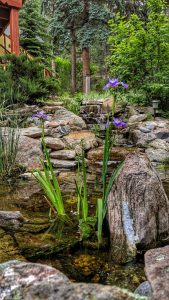 The pond water feature