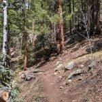 Panorama Trail in Corwina Park