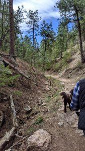 O'Fallon Park - Along the Western Ridge Trail