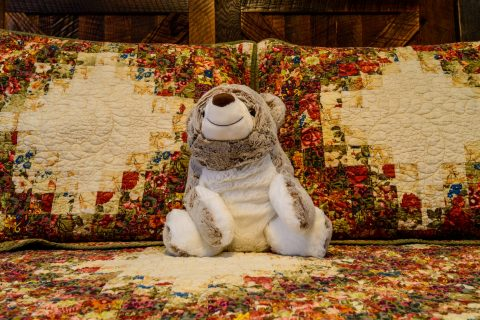 Frannie the Bear in Farmhouse