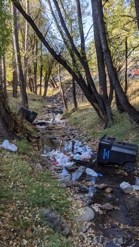 Bear puts trash barrels in the creek