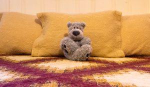 Doc the Room Bear