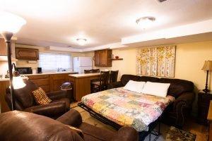 Living Room Sleep Sofa
